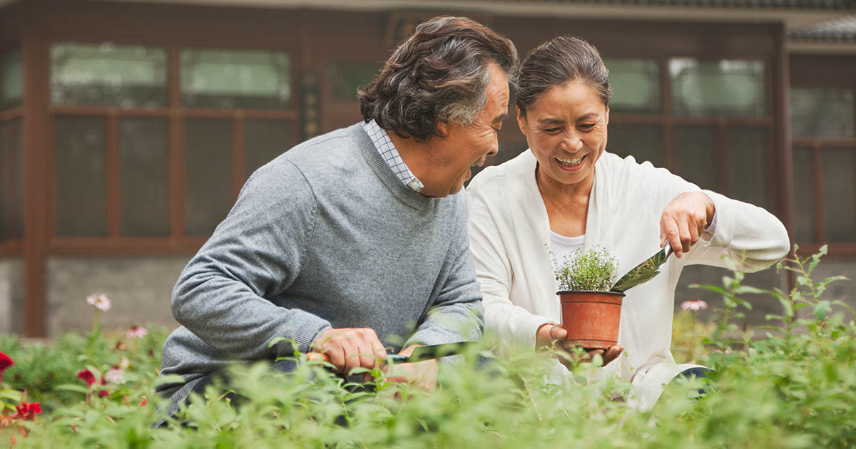 Smiling couple planting a garden