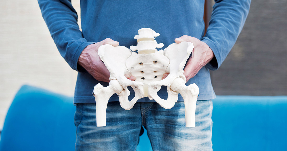 A man holding a model pelvis in front of his body